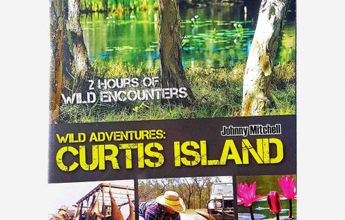 Curtis Island DVD Wild Adventures