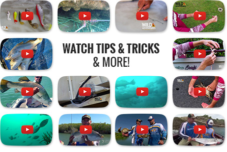 Watch fishing tips & tricks